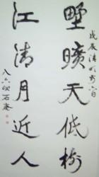 书坛百卉沁芬芳义展作品209